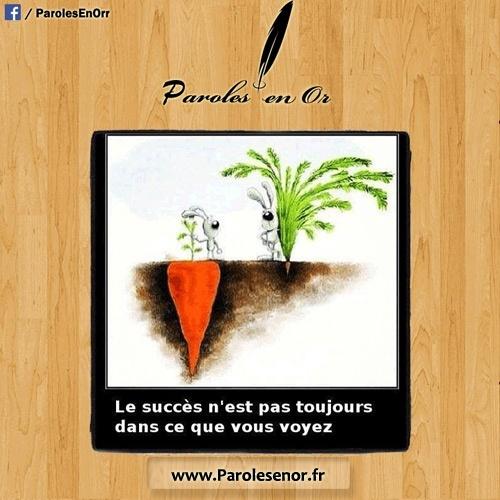 Le succès n'est pas toujours dans ce que vous voyez. Citation sur le succès.