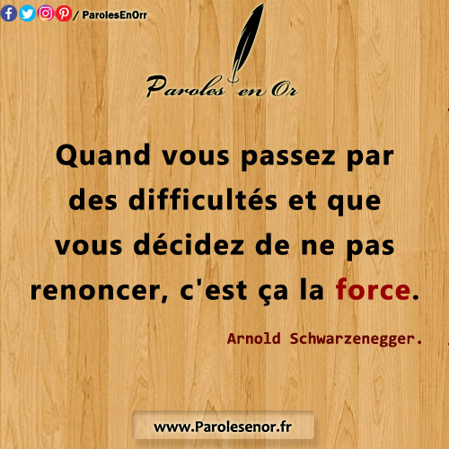 Quand vous passez par des difficultés et que vous décidez de ne pas renoncer, c'est ça la force. Citation d'Arnold Schwarzenegger.