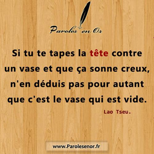 Si tu te tapes la tête contre un vase et que ça sonne creux , n'en déduis pas pour autant que c'est le vase qui est vide. Citation de Lao Tseu.