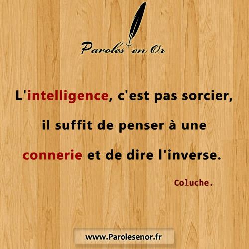 L'intelligence, c'est pas sorcier, il suffit de penser à une connerie et de dire l'inverse. Une citation de Coluche.
