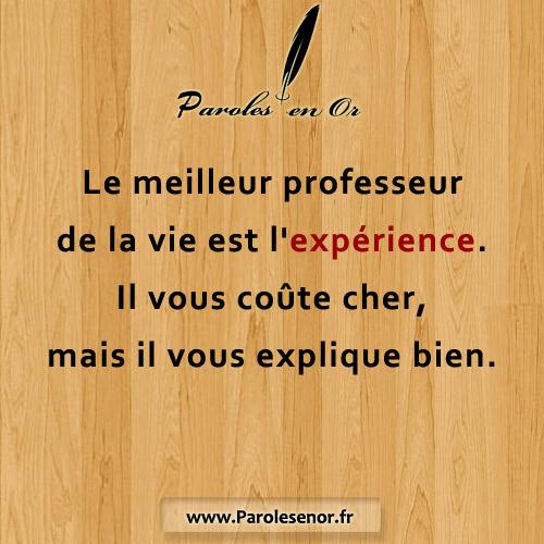 Le meilleur professeur de la vie est l'expérience. Il vous coûte cher, mais il vous explique bien.