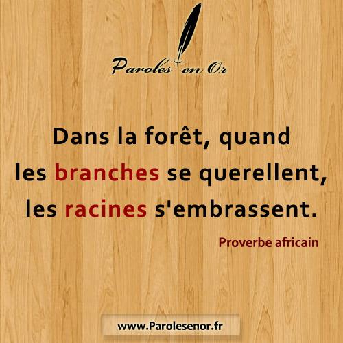 Dans la forêt, quand les branches se querellent, les racines s'embrassent. Proverbe africain.
