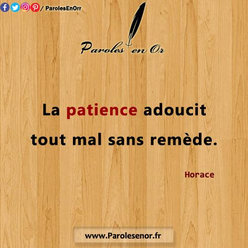 La patience adoucit tout mal sans remède. Une citation de Horace.