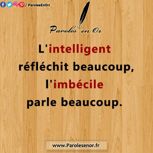 L'intelligent réfléchit beaucoup, l'imbécile parle beaucoup.