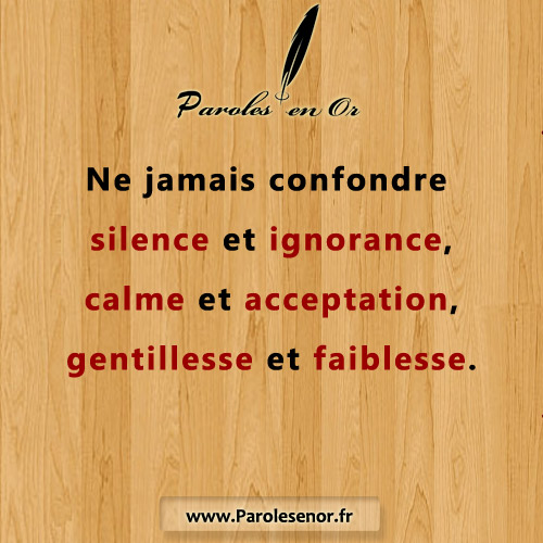 Ne jamais confondre silence et ignorance, calme et acceptation, gentillesse et faiblesse.