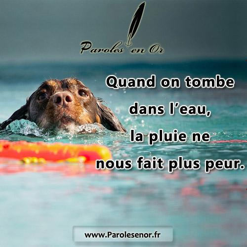 Quand on tombe dans l'eau, la pluie ne nous fait plus peur.