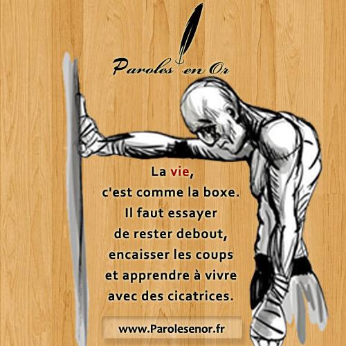 La vie, c'est comme la boxe. Il faut essayer de rester debout, encaisser les coups et apprendre à vivre avec des cicatrices.
