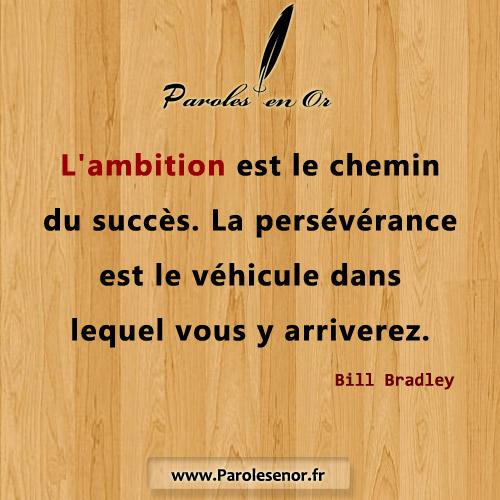 L'ambition est le chemin du succès. La persévérance est le véhicule dans lequel vous y arriverez