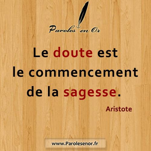 Le doute est le commencement de la sagesse
