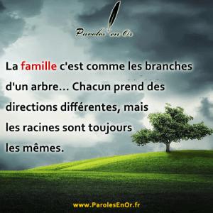 La famille c'est comme les branches d'un arbre...Chacun prend des directions différentes, mais les racines sont toujours les mêmes
